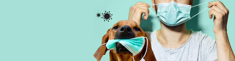 Masque de protection anti-virus