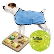 Jouets & vêtement pour chiens