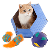 chat jouets