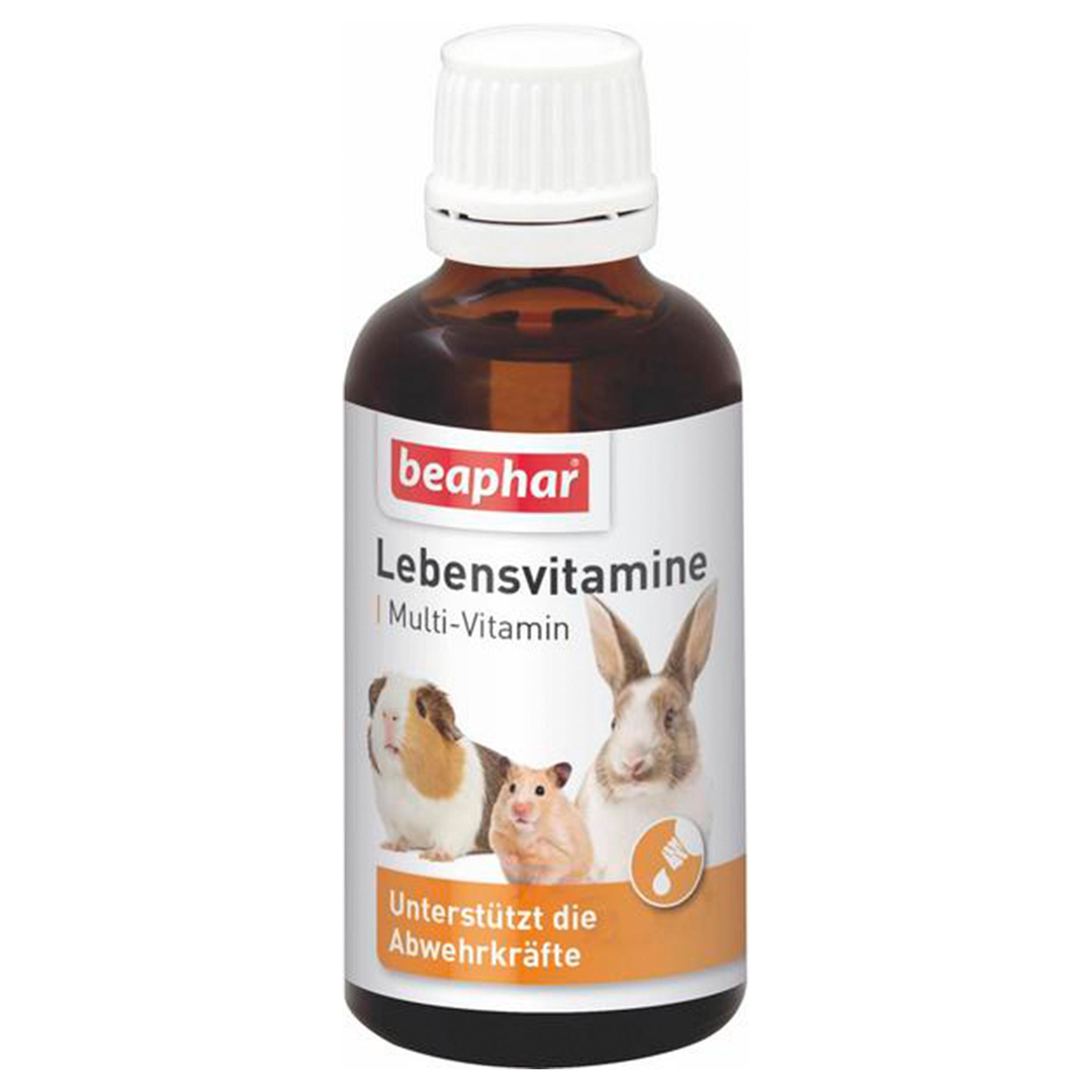 Image of beaphar Lebensvitamine Kleinnager 50ml