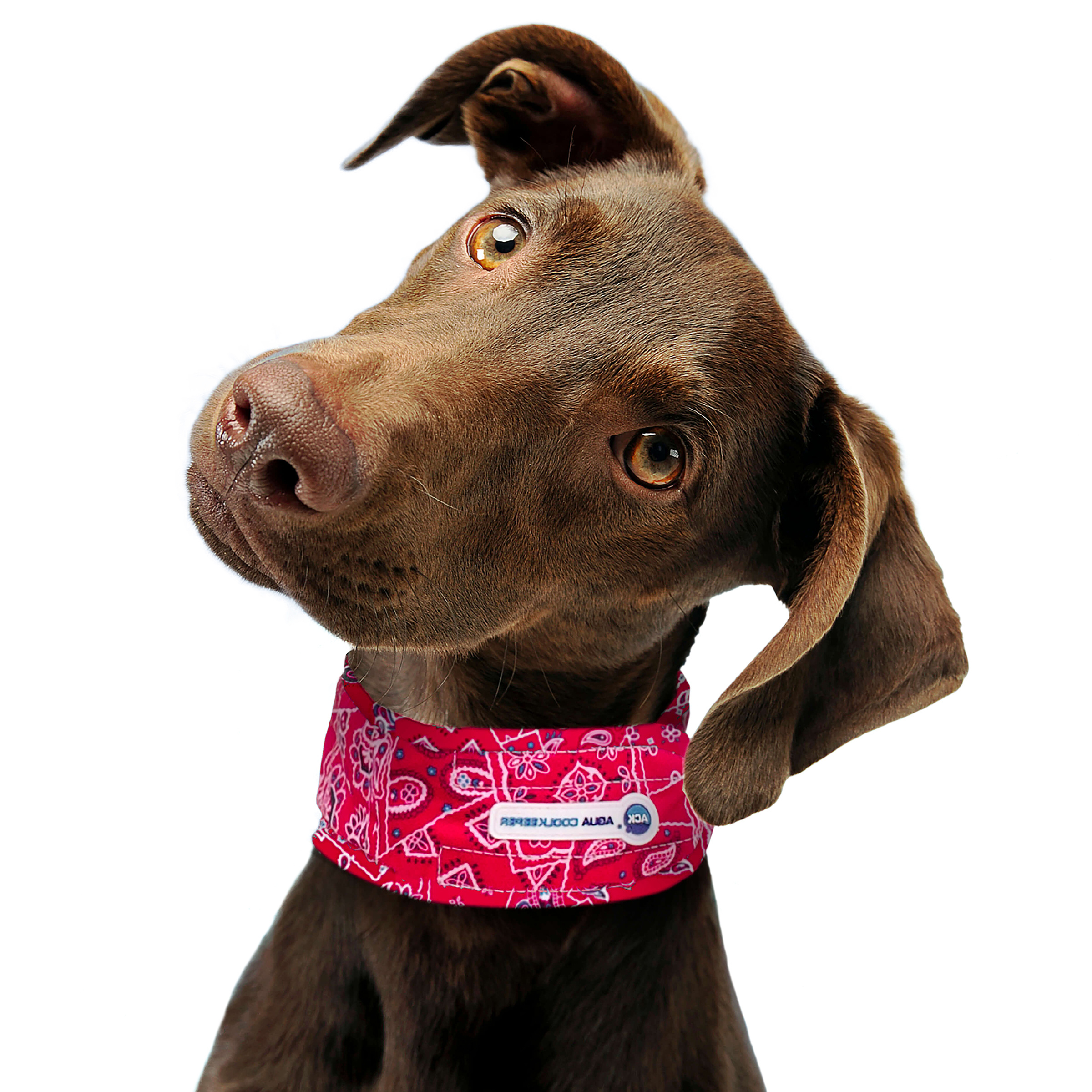Image of Aqua Coolkeeper Cooling Collar Red Western M