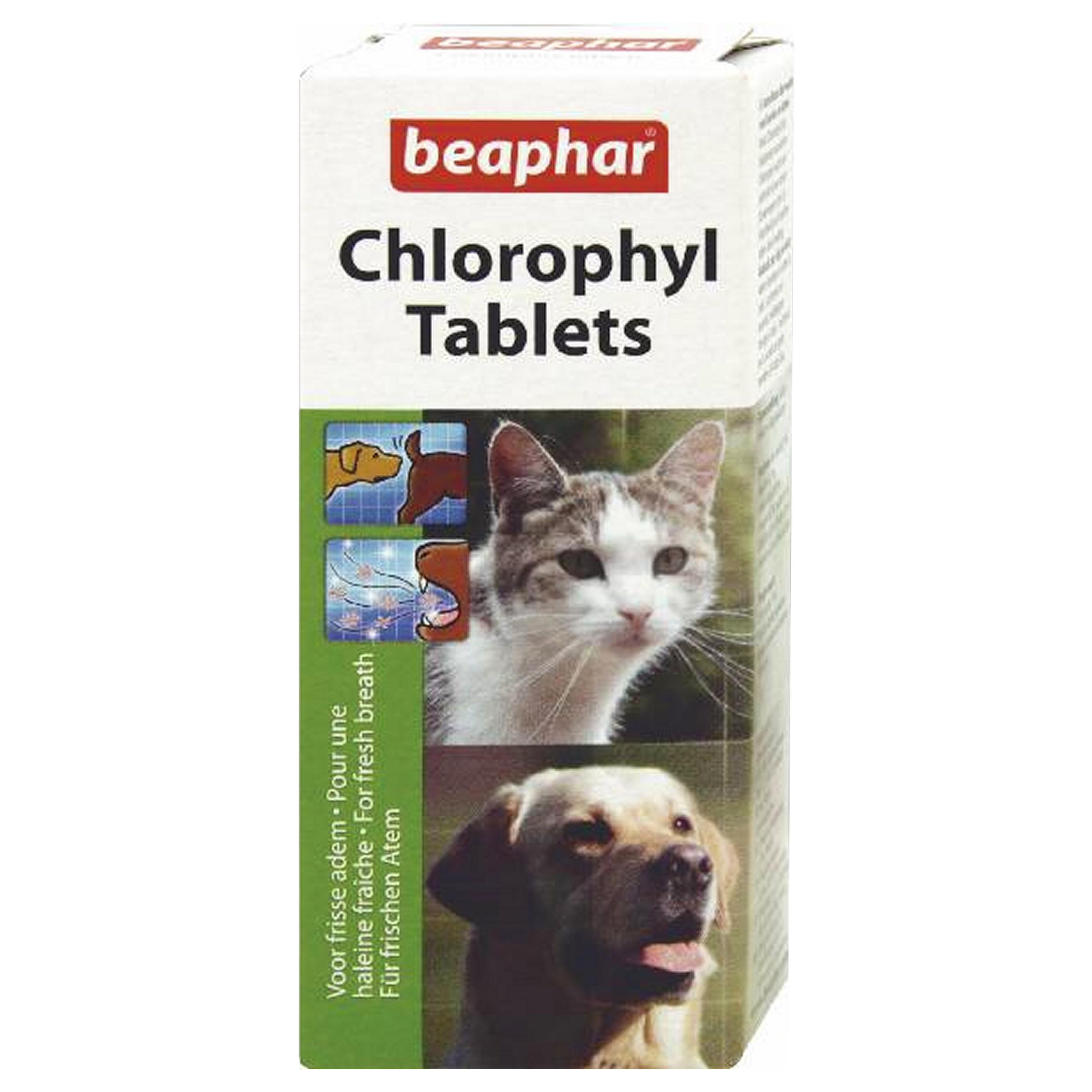 Image of beaphar Chlorophyll Tabletten Hund/Katze für frischen Atem 30Stk.