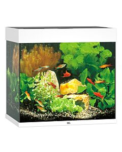 Juwel Aquarium Lido 120, 61x41x58cm, blanc