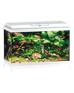 Juwel Aquarium Primo 70 LED weiss