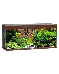 Juwel Aquarium Rio 240, 121x41x55cm,brun foncé