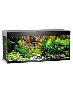 Juwel Aquarium Rio 240, 121x41x55cm, noir