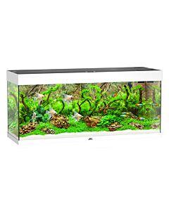 Juwel Aquarium Rio 240, 121x41x55cm, blanc