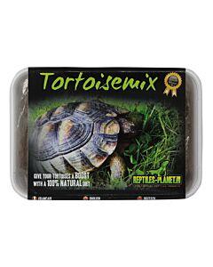 Reptiles Planet Tortoisemix