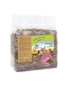 Happy Rancho Landwiesenheu mit Blütenmix 500g