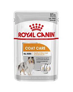 Royal Canin Hund Adult Coat Care Nassfutter für glänzendes Fell 12x85g