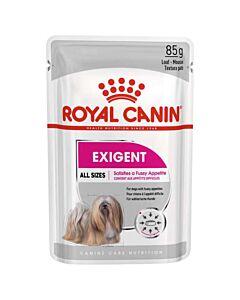 Royal Canin Nourriture pour chien Adult Exigent sachet 85g