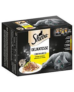 Sheba Plat exquis en gelée sélection à la volaille 4x12x85g