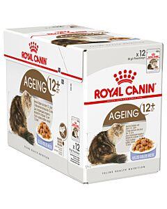 Royal Canin Katze Ageing 12+ Gelée 12x85g