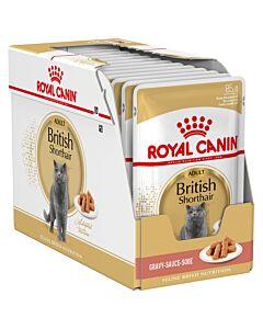 Royal Canin Katze British Shorthair 12x85g