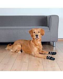 Hundesocken Anti-Rutsch schwarz