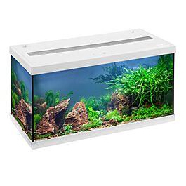EHEIM Aquarium Aquastar 54 LED blanc