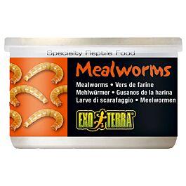 Exo Terra Reptilienfutter Mealworms 34g