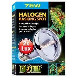 Sun Glo Tageslicht Halogenlampe 75W