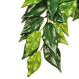 Exo Terra Jungle Plant Fikus S