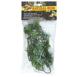ZooMed Bush Plants Mexican Phyllo L