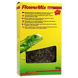 Lucky Reptile Flower Mix Hibiscus