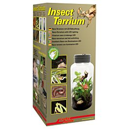 Lucky Reptile Insect Tarrium 15x15x25cm