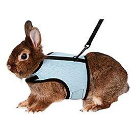 Softgeschirr mit Leine für Kaninchen