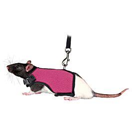Trixie Softgeschirr mit Leine für Ratten