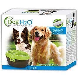 H2O Hundebrunnen
