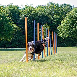 Trixie Dog Activity Agility Safer Slalom