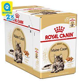 Royal Canin Katze Mainecoon 12x85g