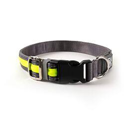 Freezack Collier lumineux Light-Collar pour chiens jaune