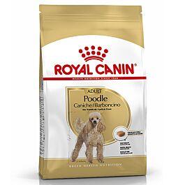 Royal Canin Adult Pudel