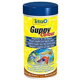 Tetra Guppy Colour