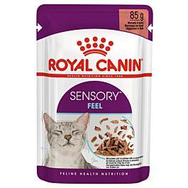 Royal Canin Chat FHN Sensory Feel en sauce