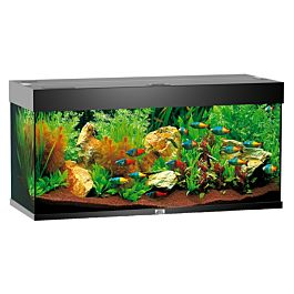 juwel aquarium rio 180 aquarien m bel fische. Black Bedroom Furniture Sets. Home Design Ideas