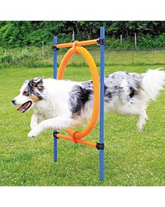 swisspet Agility Sprungring 2 in 1 55cm