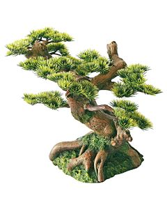 Dekor Kunst Bonsai