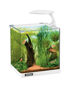 Amazonas Nano LED Aquarium ohne Filter & Pumpe