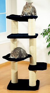 Arbres à chat moyens